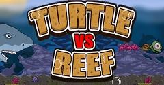 Turtle Vs Reef