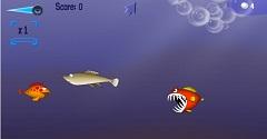 Shark Odyssy